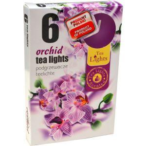 Lumanari pastila parfumate orhidee LP6321 6/set